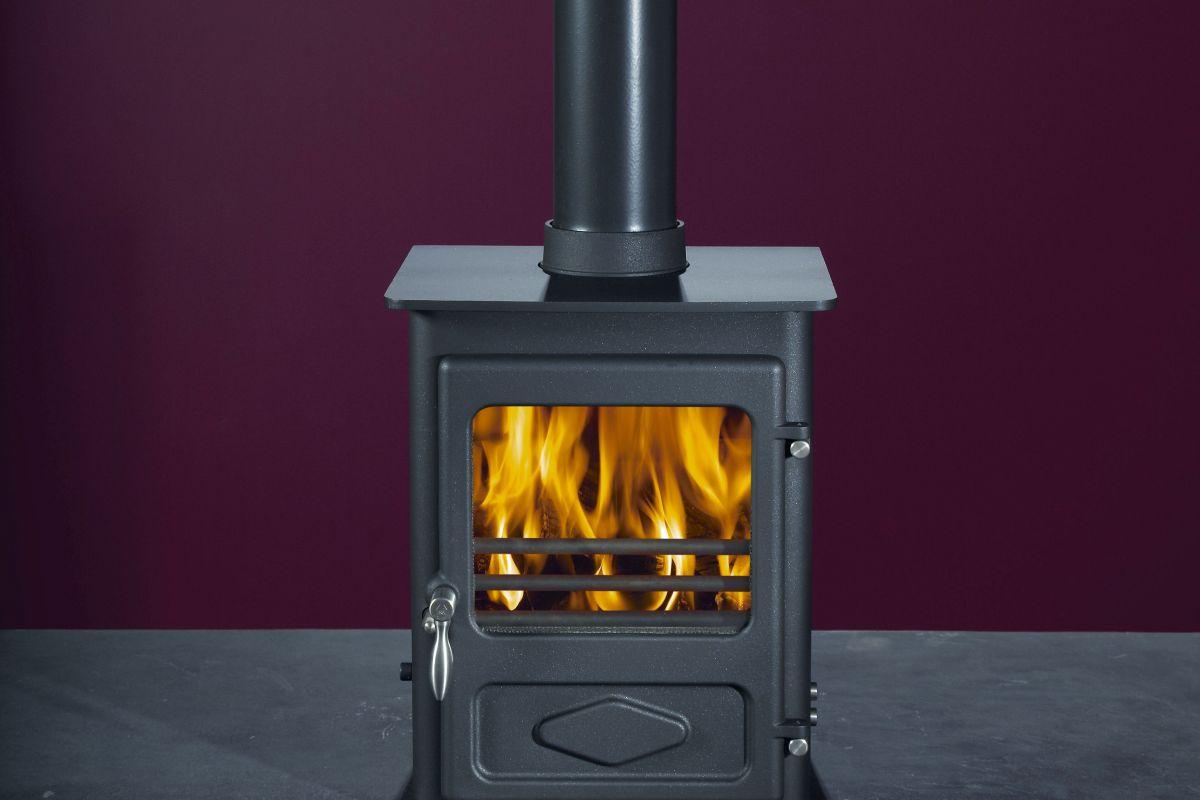 The Woodwarm Foxfire
